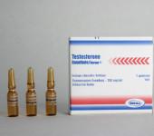 Testosteron Enanthaat Norma 250mg/amp